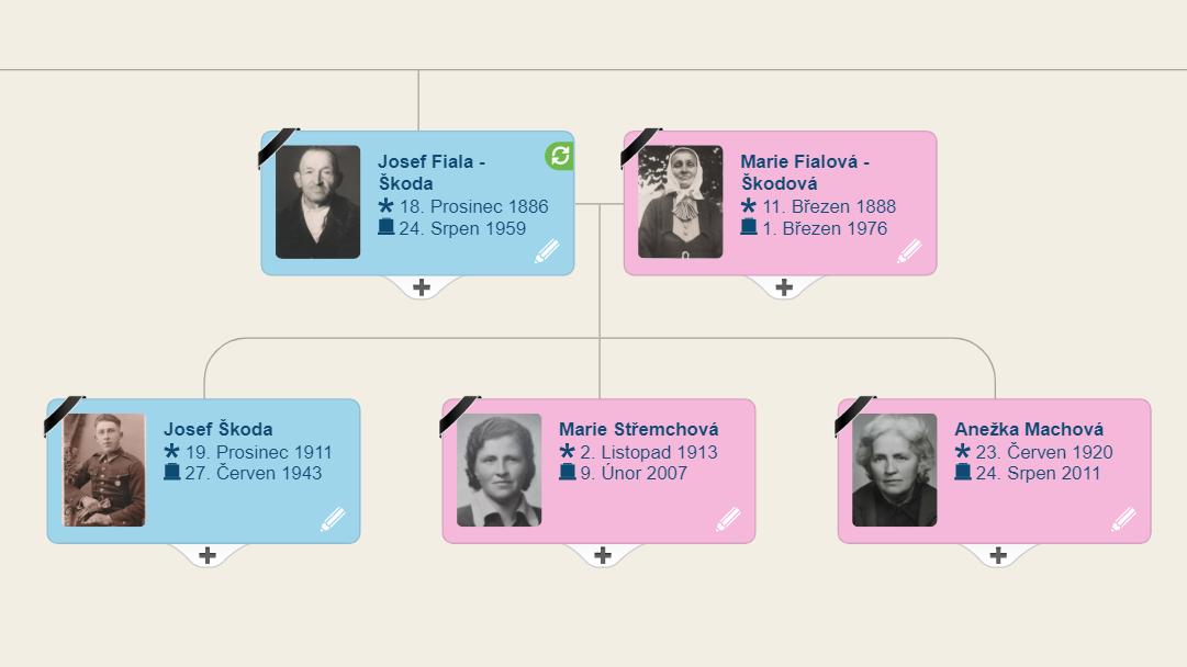 Jak vytvořit rodokmen zdarma přes MyHeritage, i když neznáte své předky