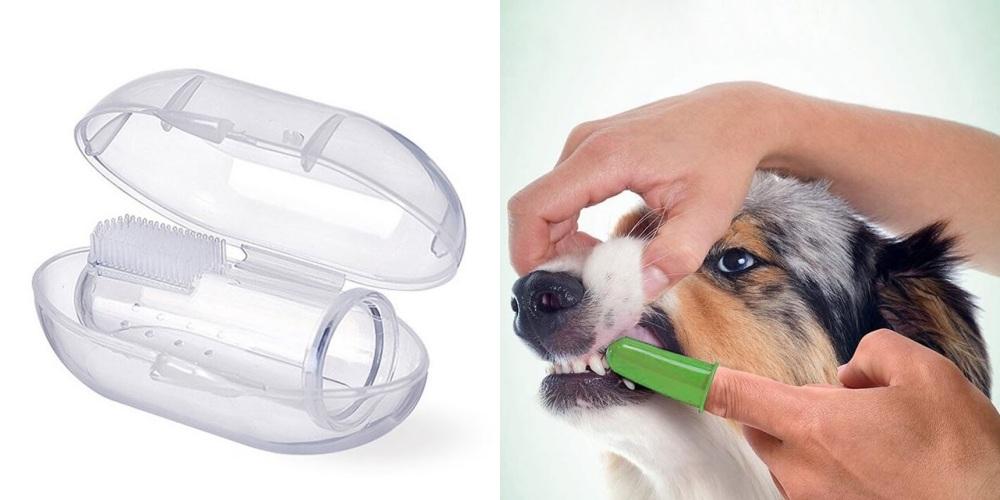 Najlepšie vychytávky pre majiteľov psov zAliExpressu: tipy od 1,42 €