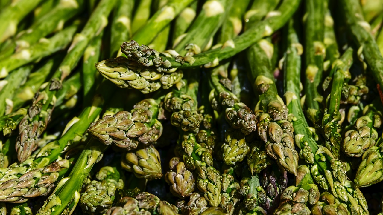 Cómo cultivar espárragos | © Pixabay.com