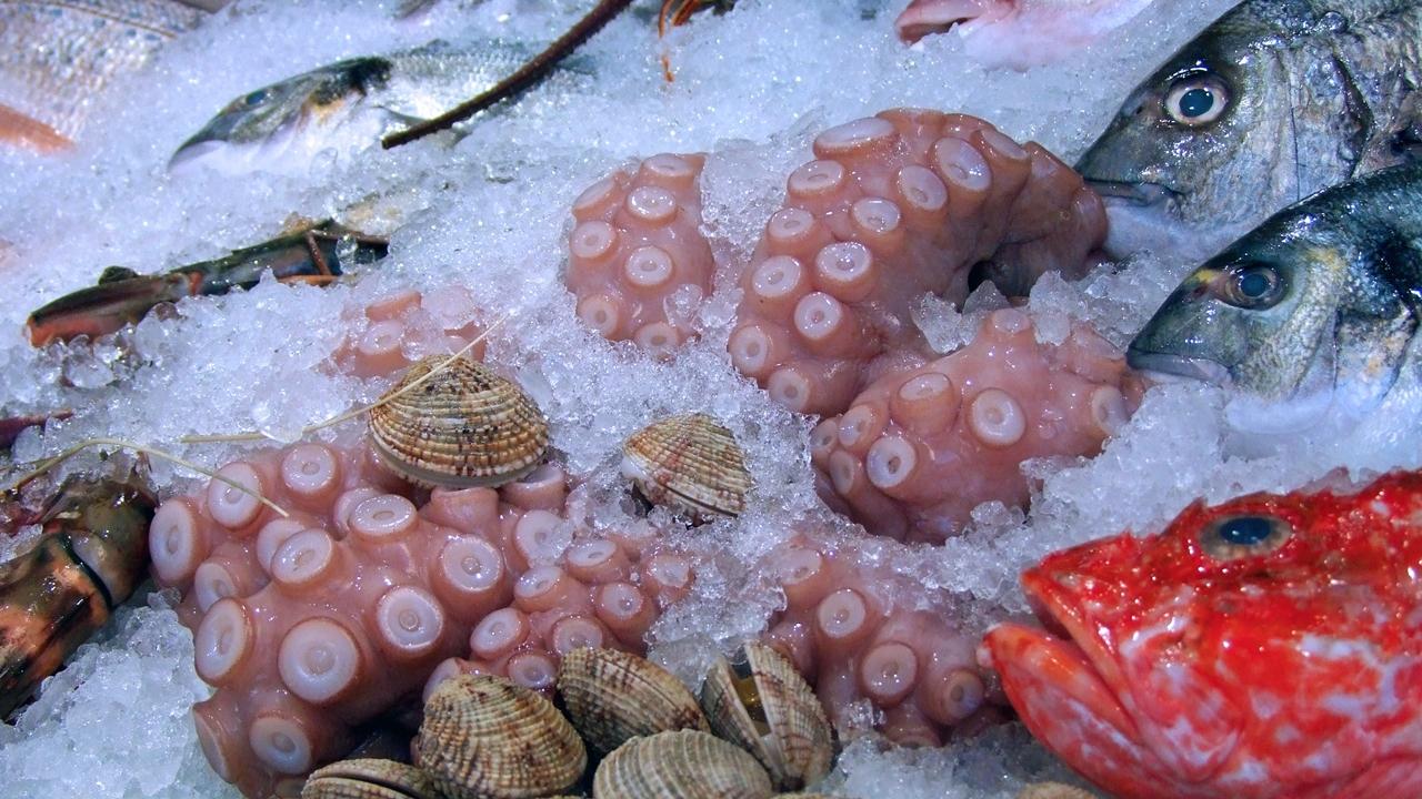 Cómo limpiar calamares   © Pixabay.com